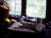 tn_1980-sonbahar-bodrum-gumusluk-milas-11