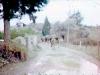 tn_1980-sonbahar-bodrum-gumusluk-milas-7