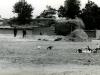 tn_1982-mersin-konya-003