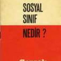 SOSYAL SINIF NEDİR