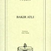 BAKIR ATLI