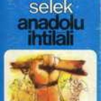 ANADOLU İHTİLALİ